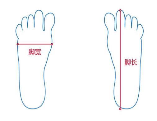 腳尺寸測量